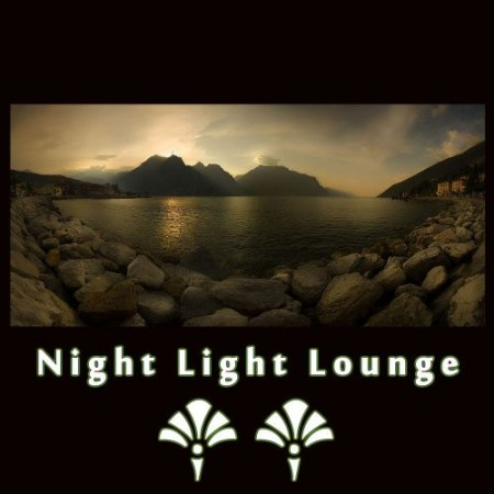 Night Light Lounge Vol. 2 (2010)