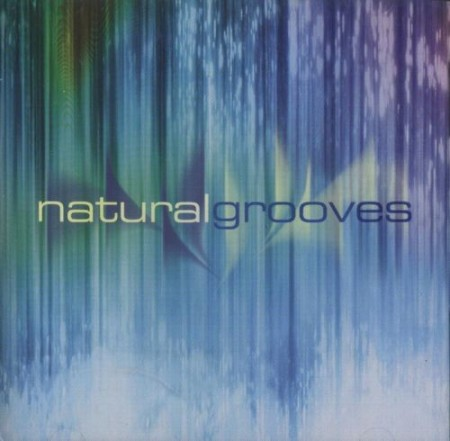 Dan Gibson's Solitudes - Natural Grooves (2005)