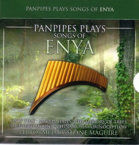 Enya - Panpipes Plays Songs Of Enya (2008)