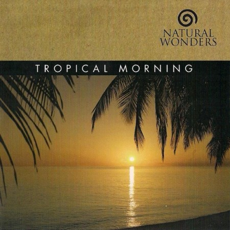 David Arkenstone - Tropical Morning (2006)