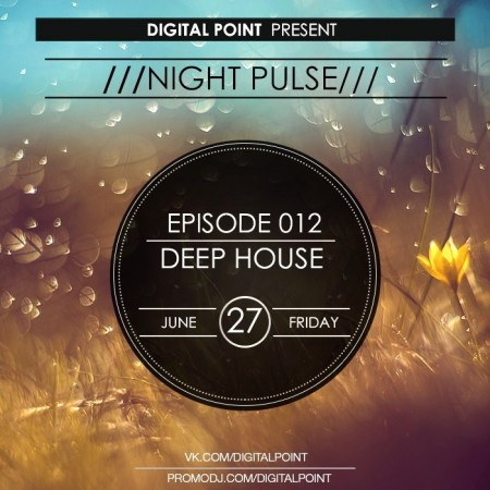 Digital Point - Night Pulse - Episode 012 (2014)