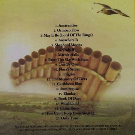Shane Maguire - The Very Best Of Enya On Panpipes (2000/2011)